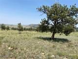 0000 Guipago Trail - Photo 2