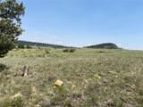 0000 Guipago Trail - Photo 3