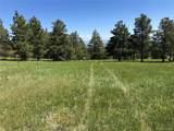 8728 Ponderosa Pine Drive - Photo 34
