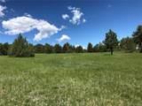 8728 Ponderosa Pine Drive - Photo 35