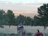 8728 Ponderosa Pine Drive - Photo 40