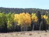 0 Rhyolite Mountain Mesa - Photo 1