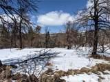 101 Wagon Mesa Loop - Photo 3