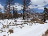 101 Wagon Mesa Loop - Photo 7