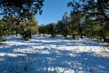 2210 Lone Pine Ol - Photo 25