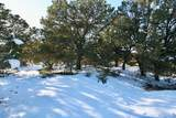 2210 Lone Pine Ol - Photo 26