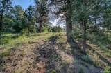 18755 Rockbrook Road - Photo 10