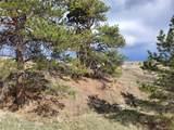 836 Pinewicket Way - Photo 10
