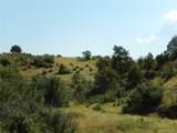 2401 County Road 11 - Photo 7