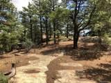 Big Pine Ridge Road - Photo 8
