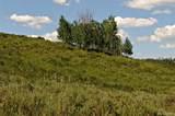 57175 Green Bird Place - Photo 1