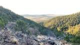 000 Big Spruce Heights - Photo 6