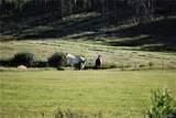 4707 County Road 41 - Photo 33