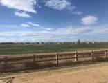 15921 Buffalo Run Drive - Photo 39