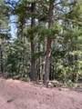 2199 Badger Drive - Photo 2