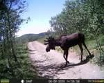 0 Mackey Mine Road - Photo 31