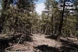 3006 Middle Fork Vista - Photo 11