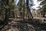 3006 Middle Fork Vista - Photo 12