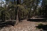3006 Middle Fork Vista - Photo 15
