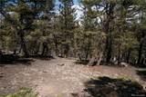 3006 Middle Fork Vista - Photo 16