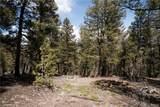 3006 Middle Fork Vista - Photo 19