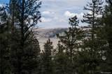 3006 Middle Fork Vista - Photo 9