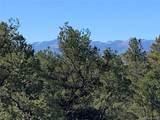388 Paintbrush Trail - Photo 11