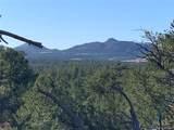388 Paintbrush Trail - Photo 12