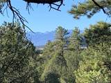 388 Paintbrush Trail - Photo 3