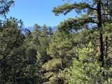 388 Paintbrush Trail - Photo 4
