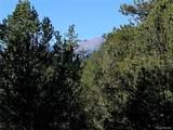 388 Paintbrush Trail - Photo 5