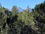 388 Paintbrush Trail - Photo 6