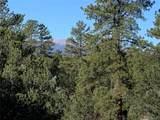 388 Paintbrush Trail - Photo 7