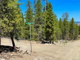388 Mt Massive Drive - Photo 2