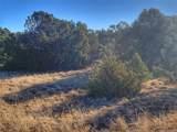 Lot 110 Navajo Ranch - Photo 4