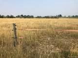 6146 Pheasant Crest Drive - Photo 12