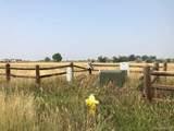 6146 Pheasant Crest Drive - Photo 13