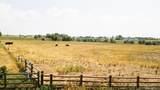 6146 Pheasant Crest Drive - Photo 2