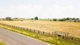 6146 Pheasant Crest Drive - Photo 3
