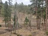 6 Turret Peak Trail - Photo 11