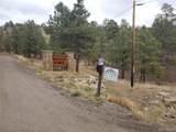 6 Turret Peak Trail - Photo 15