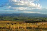 5739 Scenic Mesa Road - Photo 4