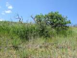 Raspberry Mtn Ranch - Photo 16