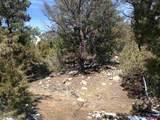 4208C Caprice Way - Photo 6