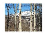 26510 Beaver Canyon Drive - Photo 1