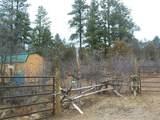 371 Cat Creek Overlook - Photo 3