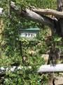 371 Cat Creek Overlook - Photo 8