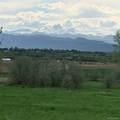 6860 County Road 5 - Photo 5