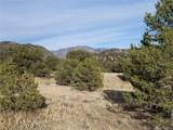 10765 Sawatch Range Road - Photo 21