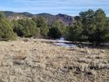 10765 Sawatch Range Road - Photo 31